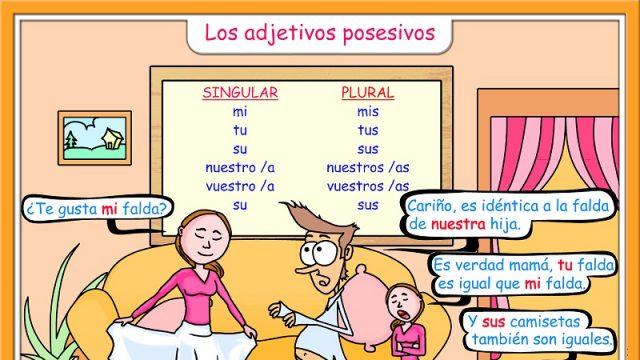 Adjetivos posesivos - bezittelijke vnw